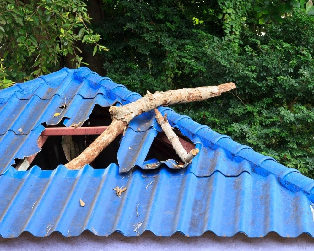 OF SUMMER STORMS AND BROKEN ROOFS