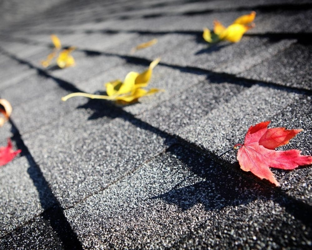 CLEAN AUTUMN DEBRIS FROM YOUR ROOF BEFORE WINTER HITS!