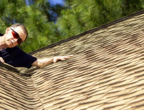 Spring Roof Maintenance Tips for Toronto Homeowners
