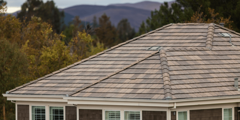 a brown roof during fall