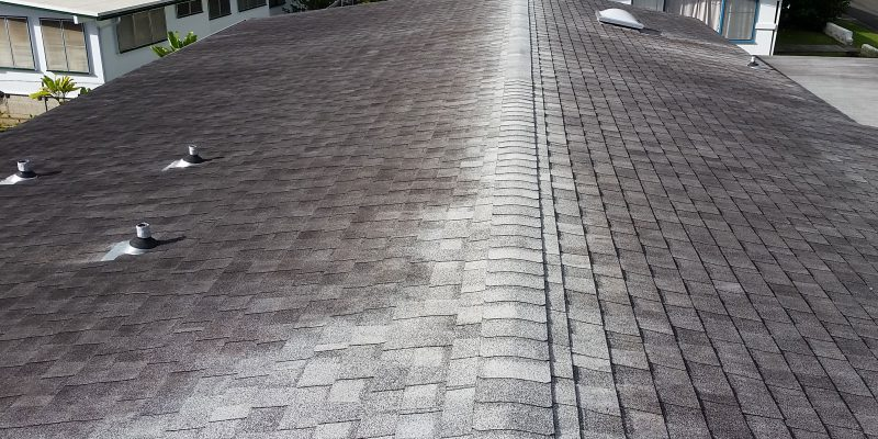 Don T Let Mold Amp Mildew Threaten The Integrity Of Your Roof